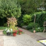 tuin met groen